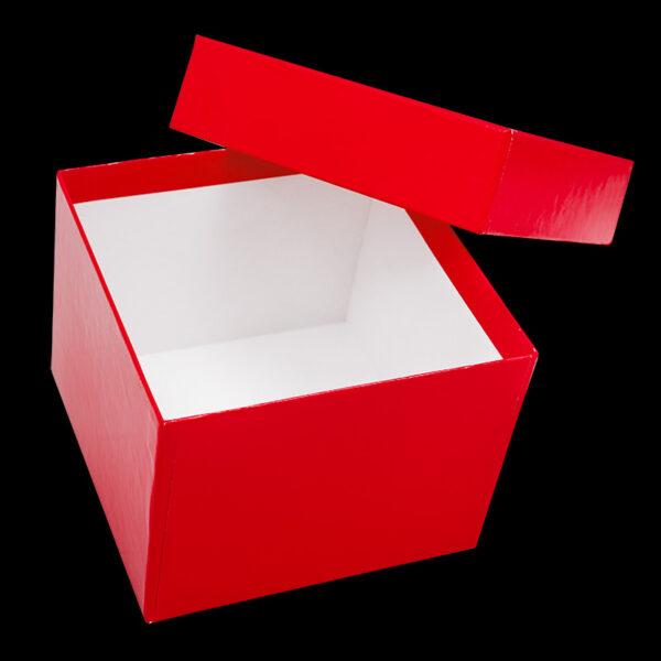 Cardboardboks 100 mm roed