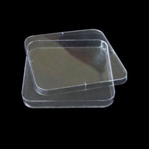 Petriskaale firkantede