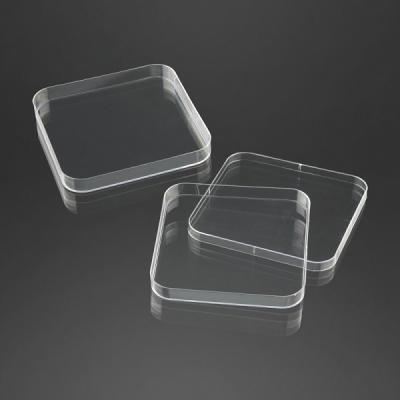 Petriskaal firkantet krystalklar