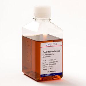 Fetal Bovine Serum South America Origin